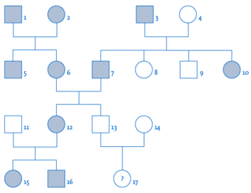 Stammbaumanalyse (Genetik)