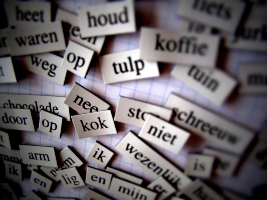Niederländische Wörter